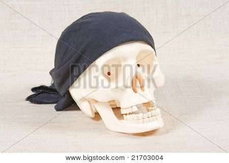 The skull with black bandana