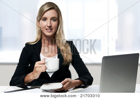 young confident smiling successful business woman working at office