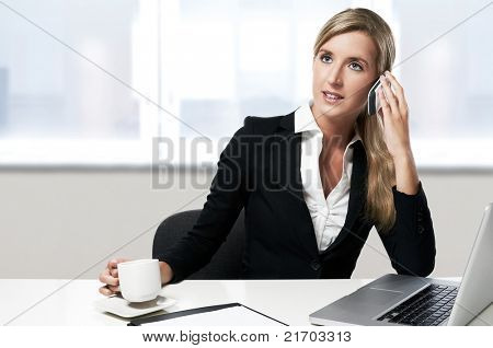 young confident successful business woman working at office