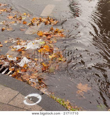 Clogged sewer blocks rainwater runoff