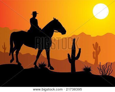Man On The Horse In Desert