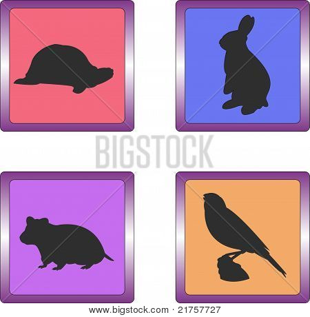 Pet icons 02
