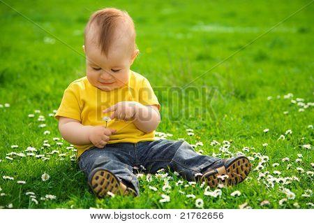 Little Boy Is Sitting On Green Meadow
