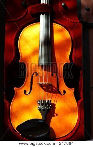 Violin46