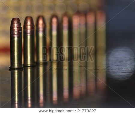 .22 Caliber Hollow Point Rounds