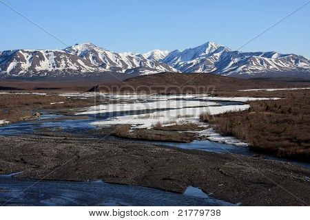Savage River In Spring, Denali National Park