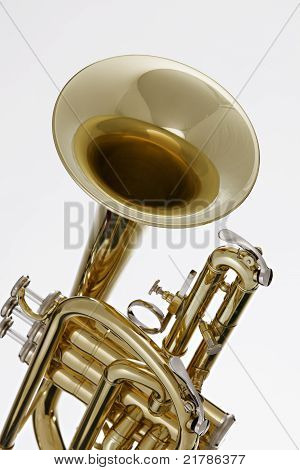 Cornet Trumpet Isolated On White