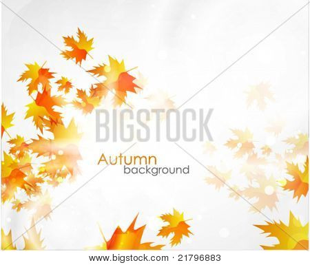 Vector fall background. Orange leaves