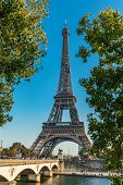 Tour Eiffel (Eiffel Tower) surrounded by trees in Paris, France, Europe poster