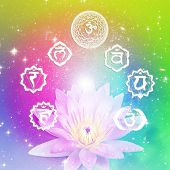 pic of chakra  - seven symbols of chakra with a flower lotus over colorful background with stars - JPG