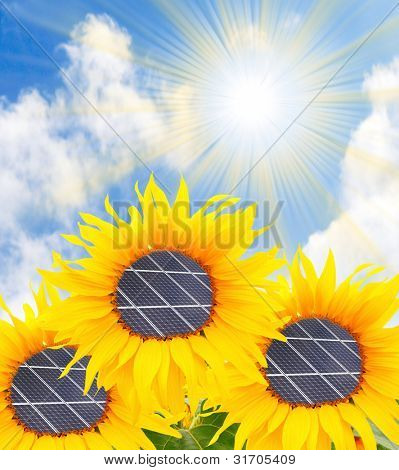 Alternative energy concept. The sunflowers with solar panels.