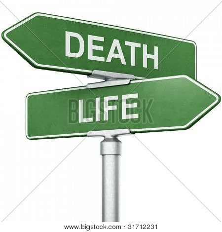 "3d rendering of signs with ""LIFE"" and ""DEATH"" pointing in opposite directions"