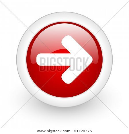 glossy oryginal circle icon with shadow on white background