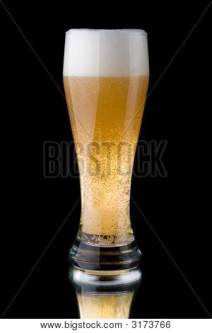 Cerveja espumante fresca