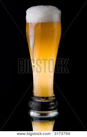 Fresh Foamy Beer