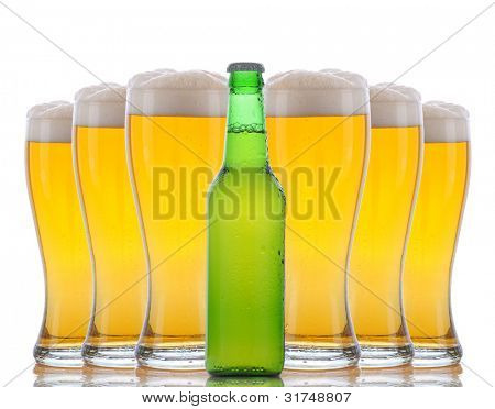 A green beer bottle standing in front of six cold frosty glasses with foamy tops. Horizontal format over white with reflections.
