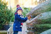 Adorable Little Smiling Kid Boy Holding Christmas Tree On Market. Happy Healthy Child In Winter Fash poster
