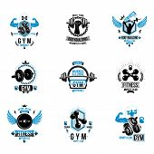 Vector Fitness Workout Theme Logotypes And Inspiring Posters Collection Created With Dumbbells, Barb poster