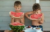 Two Brothers Eat A Ripe Juicy Watermelon On The Veranda Of The House On A Warm Summer Day. Boys Eat  poster