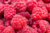 Macro Photo Food Raspberry Berry. Texture Background Ripe Pink Raspberry Berry. Image Food Product B poster