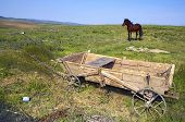 stock photo of ox wagon  - Romanain carriage with horse - JPG