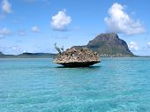 foto of mauritius  - A coral island in the tropical ocean around mauritius - JPG