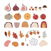 Set Of Modern Abstract Hand-drawn Autumn Elements. Apple, Fig Fruit, Pumpkins, Acorns, Rainbows, Phy poster