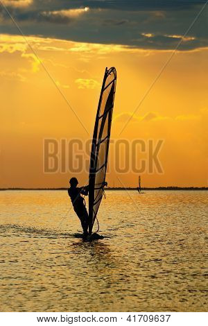 Man Windsurfer