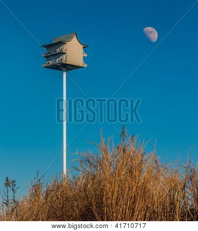 Birdhouse on a sand dune