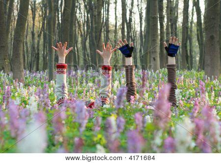 Hends In Flowers