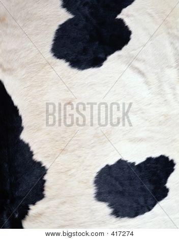 Textura de vaca