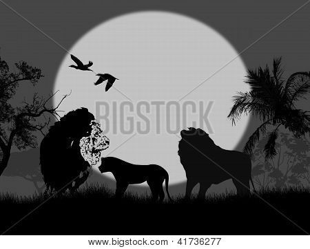 Safari Of Lion Family At Night