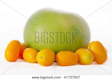 Sweetie And Kumquats