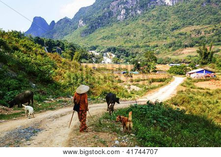 Cao Bang province in Vietnam