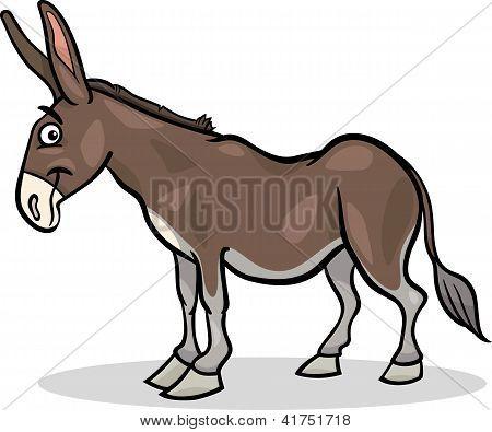 Donkey Farm Animal Cartoon Illustration