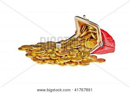 Scattered  Gold Coins Are In  Red Purse, Isolated On White Background And Dice Cube With The Word Se