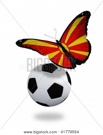Concept - Butterfly With Macedonian Flag Flying Near The Ball, Like Football Team Playing