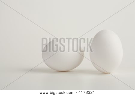 Solo Egg On White Background
