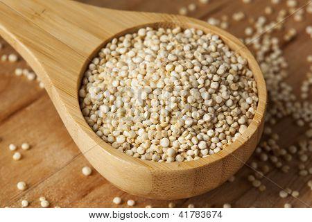 Raw Organic Quinoa Seeds