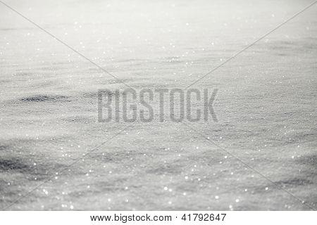 Shiny White Snow Carpet !