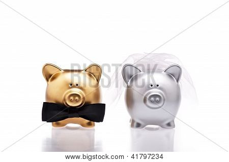 Marriage Concept Two Cute Pigs