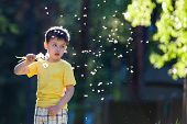 stock photo of have sweet dreams  - Little boy having fun with dandelion seeds - JPG