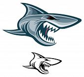 stock photo of great white shark  - Great white shark mascot color and black and white - JPG