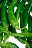 spices : A bunch of spicy green hot chili peppers isolated over white background poster