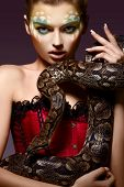 stock photo of serpent  - Serpent - JPG