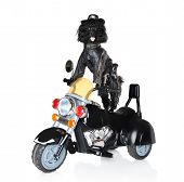 stock photo of bull riding  - Poodle in leather jacket riding on a black police motorcycle - JPG