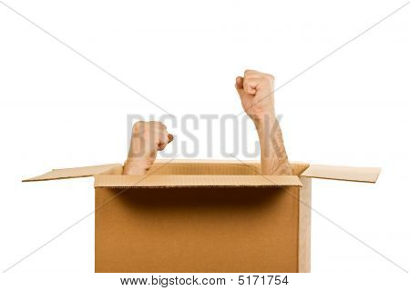 Hands Inside Of The Box
