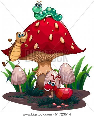 Illustration of a mushroom surrounded with different insects on a white background