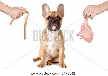 Sausage Or Meat For The Dog