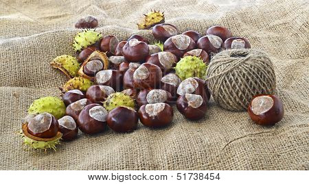 conkers and a ball of string